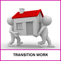 We Support Transition Work